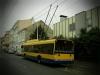 1. 11. 2013 - Trolejbus Škoda 26 Tr Solaris #173 stanicuje v zastávce Jankovcova na lince č. 12 | Zaslal: 82fanda