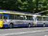 © J. Grill MHDTeplice.cz / 5.6.2010- Trolejbus Škoda 15Tr, ev.č. 203, linka 13, stoupá do kopce na Novou Ves. S těmito vozy, se zde můžete setkat jen vyjímečně a svézt se sem v nich můžete jen 2 dny v roce a to právě při zahájení L.S., kdy jezdí po celém městě velkokapacitní posilové spoje.